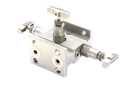 Steel Manifold Valves