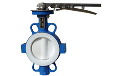 Steel PFA Lined Valves